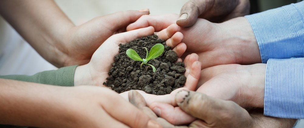 many hands and seedling shutterstock_147729638_cropped